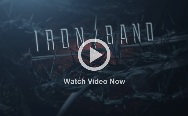 Wordpress theme for music band video preview